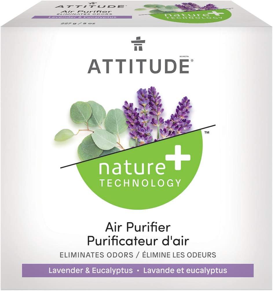 Actitude purificador de aire Eucalipto Lavanda 227 g: Amazon.es: Salud y cuidado personal