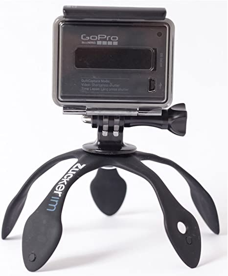 Gekko Pod para Smartphone - morado: Amazon.es: Electrónica