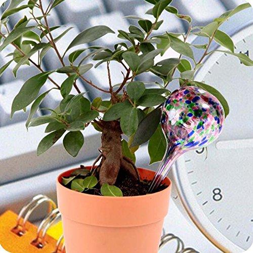 Cratone Bunte Bew/ässerungskugel Blumenbew/ässerung aus Glas Gie/ßarm Bew/ässerungs-Kugeln kleine selbstbew/ässernder Blumentopf /Ø 7 cm H 20cm f/ür topfpflanzen