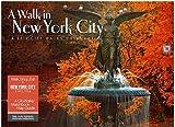 A Walk in New York City 2012 Wall Calendar