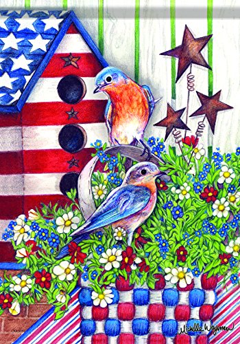 Carson Home Accents Garden Flag, Patriotic ()