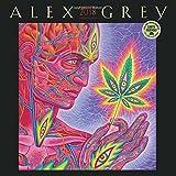 Alex Grey 2018 Wall Calendar