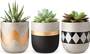 Mkono 4-Inch Cement Succulent Planter Modern Flower Pots Mini Planter Indoor for Cactus Herb or Small Plants, Set of 3