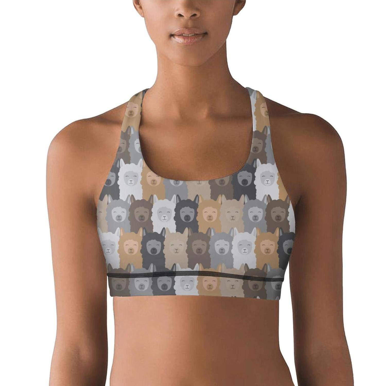 989c677f8333c Pdaqs artist llama heart womens summer sports bra workout bra at amazon  womens clothing store jpg
