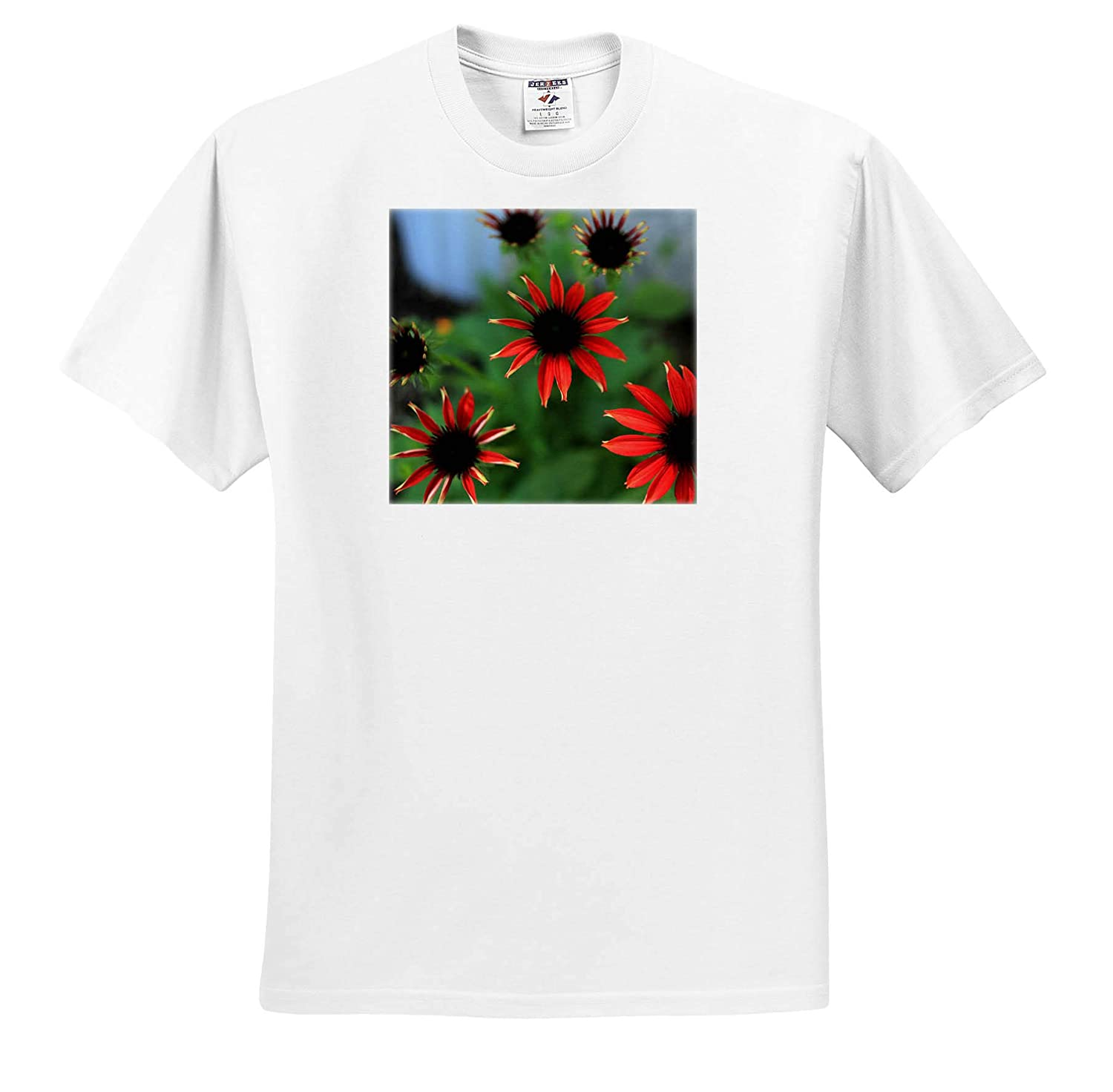 ts/_308730 Photograph of Bright red coneflowers in Bloom 3dRose Stamp City Flowers - Adult T-Shirt XL