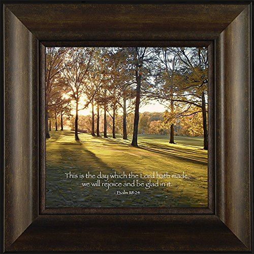 Morning Dream By Todd Thunstedt 20x20 Tree Landscape Sunshine Easter Christmas Cross Passover Passage Bible Verse Quotes Isaiah Matthew Mark John Proverbs Catholic Framed Art Print Wall Décor Picture