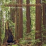 California Redwoods Calendar 2018
