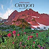 Oregon Wild & Scenic 2020 12 x 12 Inch Monthly Square Wall Calendar, USA United States of America Pacific West State Nature