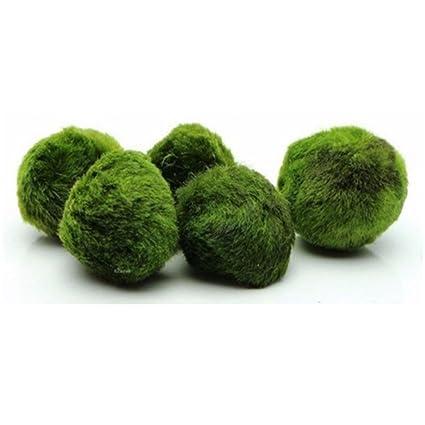 CDKJ: Bolas de Algas Artificiales para Decoración de Acuario para peceras