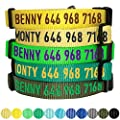 Blueberry Pet Essentials 30 Colors Personalized Dog Collar Neon Green Small Adjustable Customized Id Collars For Small Dogs Embroidered With Pet Name Phone Number
