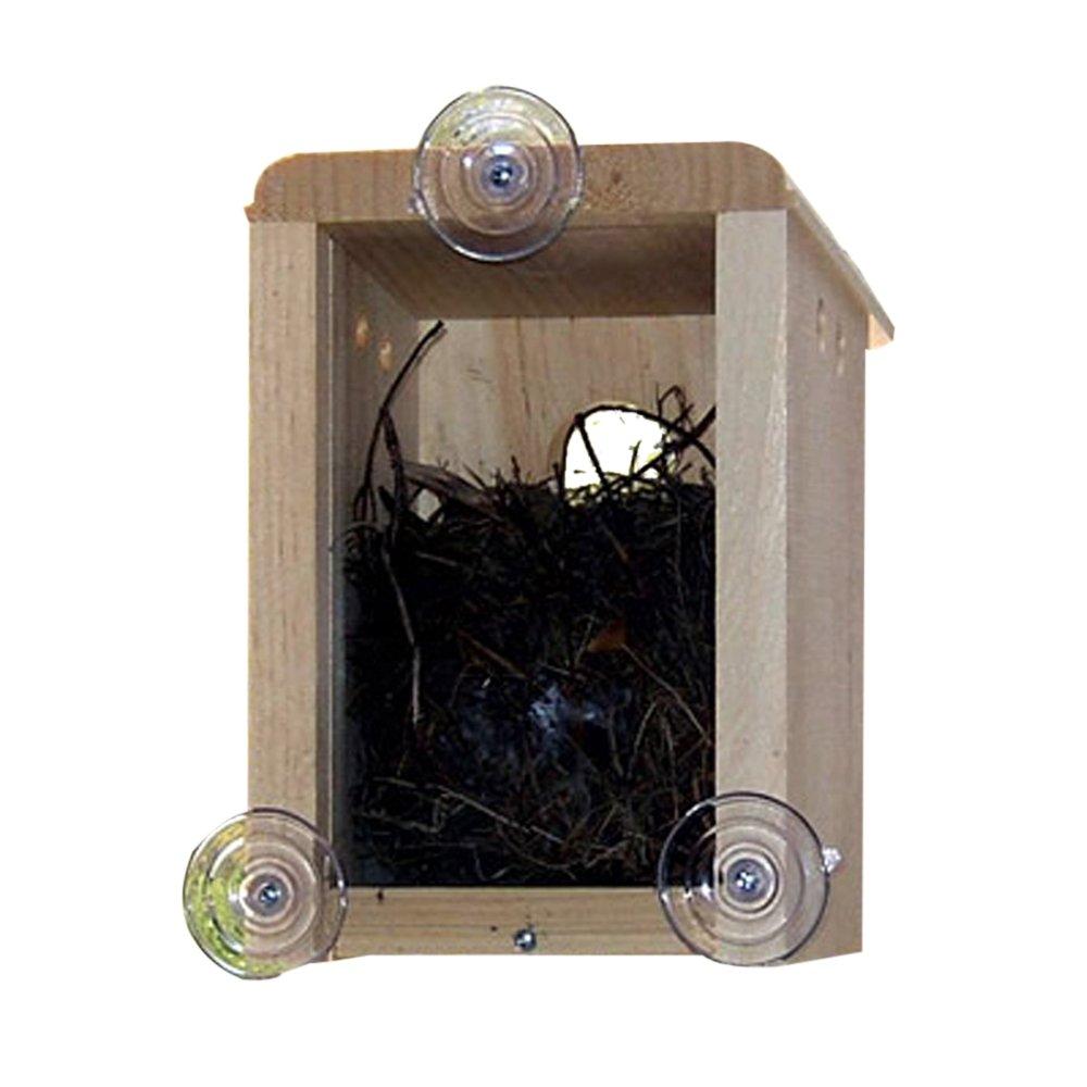 Window bird house - Window Bird House 31