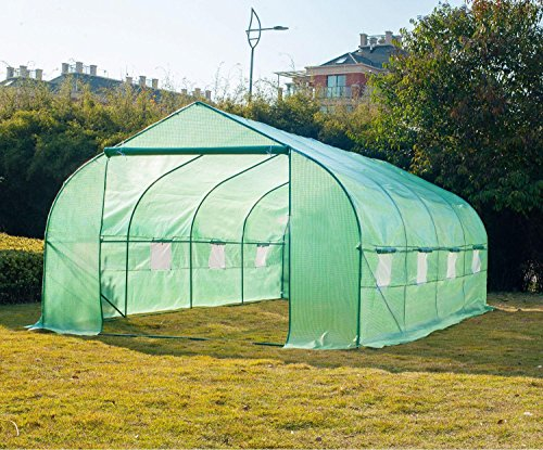 Greenhouses & Cold Frames Larger Big Green House 20'×10'×7' Walk in Greenhouse Outdoor Plant Gardening Durable price tips cheap