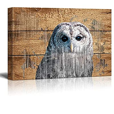 Double Exposure Rustic Canvas Wall Art - an Owl - Giclee Print Modern Wall Art | Stretched Gallery Wrap Ready to Hang Home Decoration - 24x36 inches