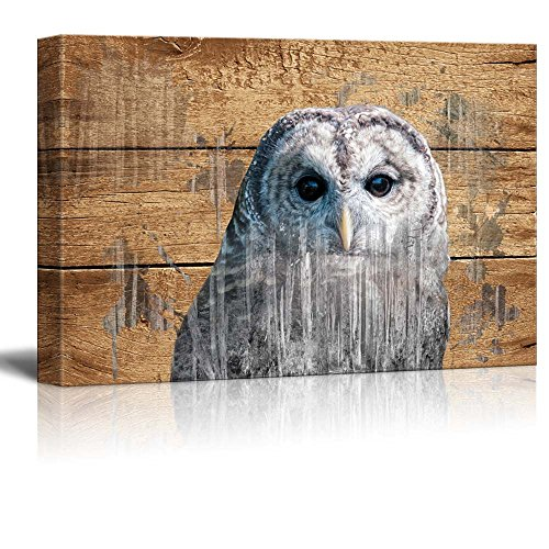 Double Exposure Rustic an Owl Wall Decor ation