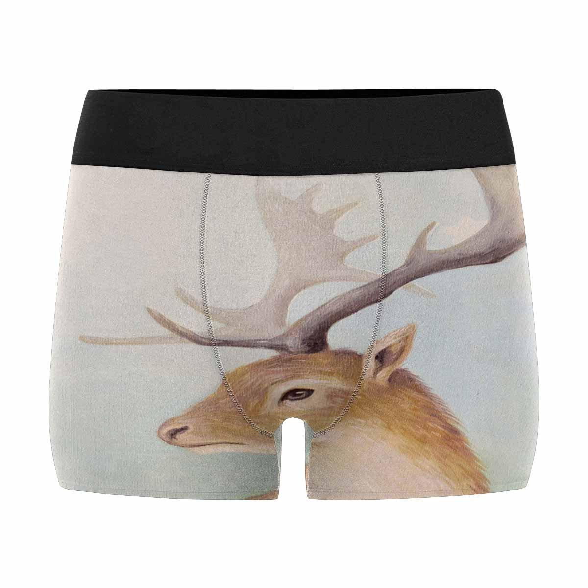 INTERESTPRINT Mens Boxer Briefs Underwear Deer and Little White Star XS-3XL