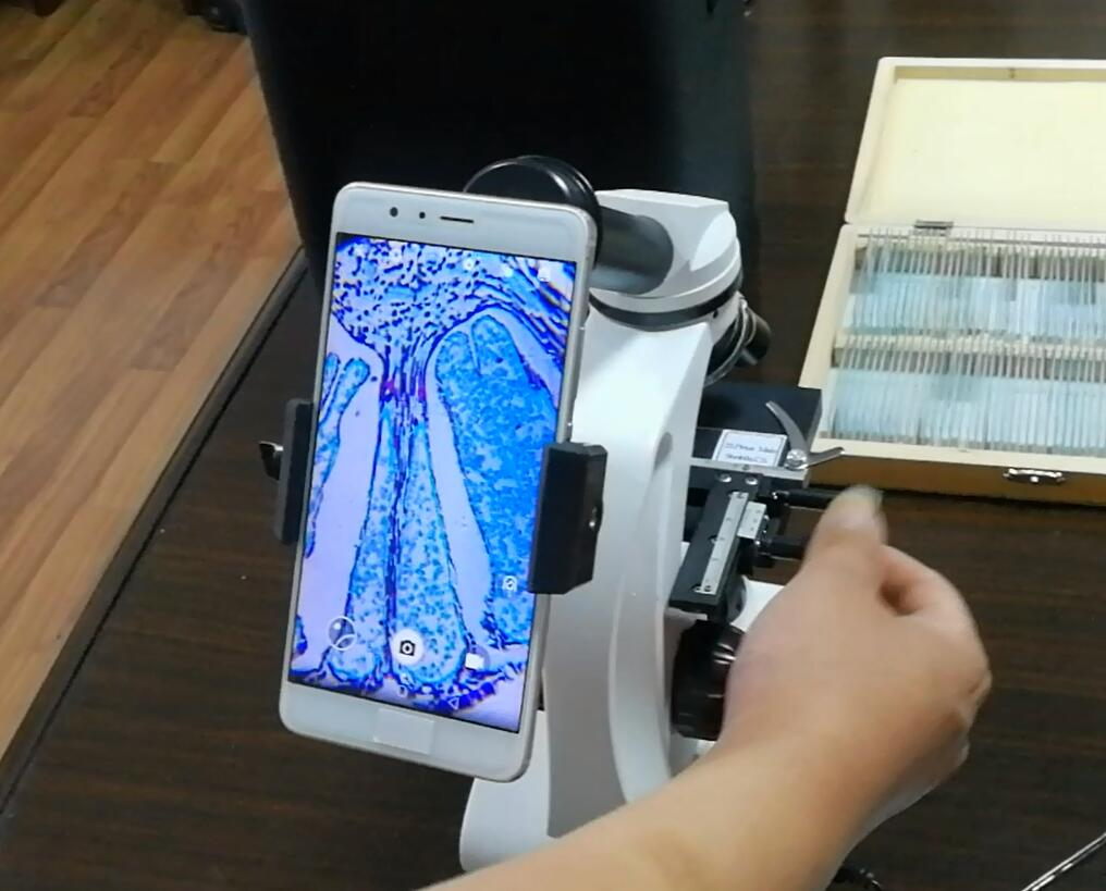 Microscope Smartphone Adapter with Built-in 23.2mm Eyepiece for iPhone 6//6s