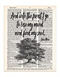Into the Forest, John Muir Nature Quote, Dictionary Page Art Print, 8x11 UNFRAMED