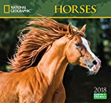 National Geographic Horses 2018 Wall Calendar