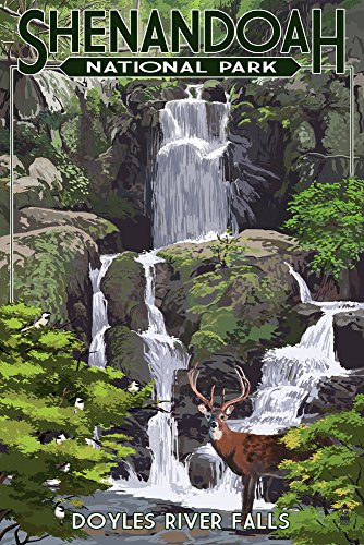 Shenandoah National Park  Virginia   Doyles River Falls  9X12 Art Print  Wall Decor Travel Poster