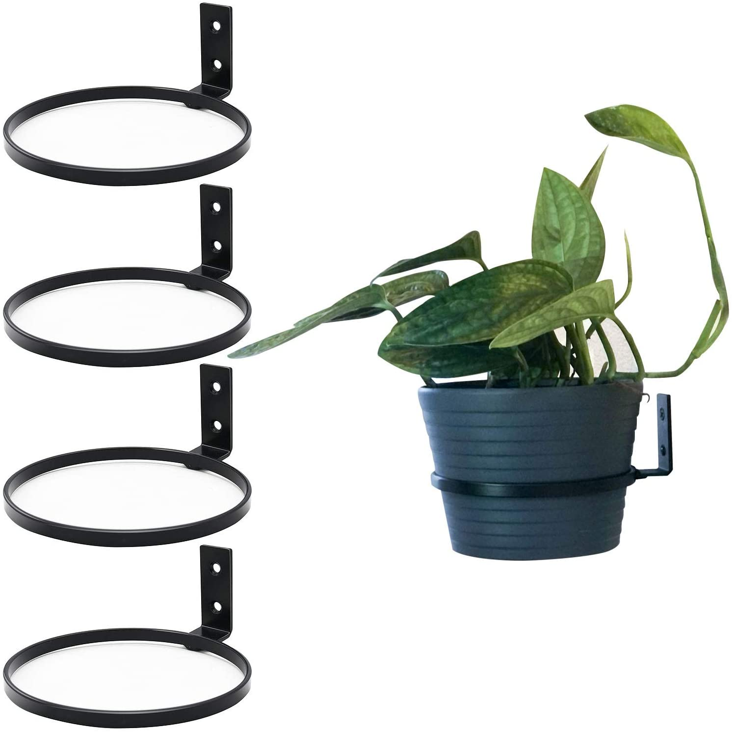 LINERY 4 Pack Matte Black Hanging Plant Pot Stand Flower Plant Pot Support Holder Ring Iron Anti-Rust Fit for Outdoor/Indoor Home Decoration (S)