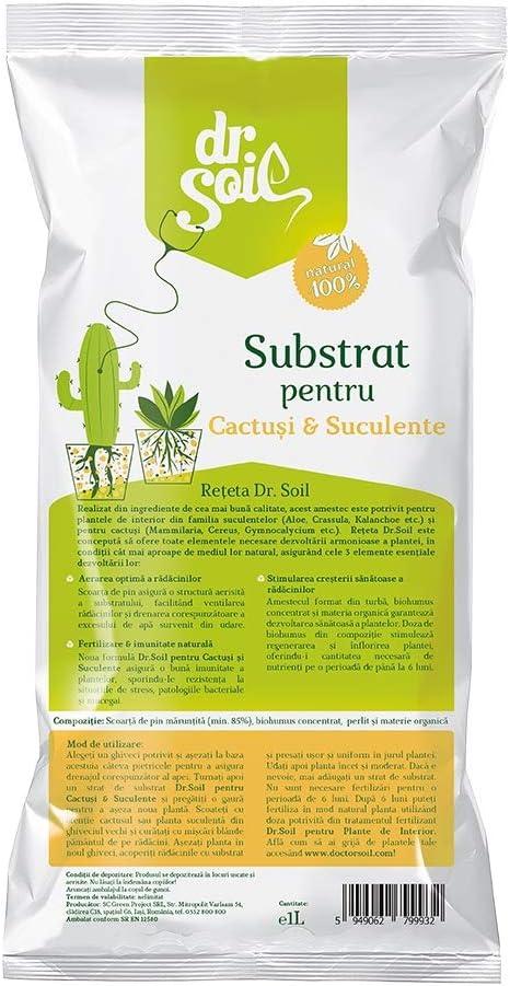 Dr.Soil Tierra premium para Cactus y Succulentas en bolsa de 1L ...