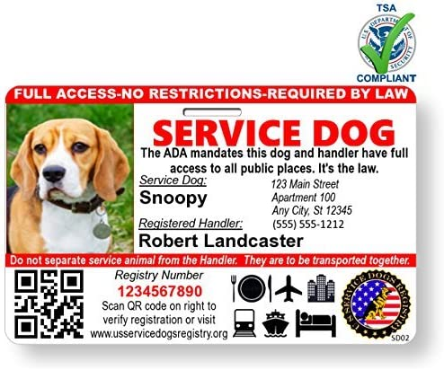 Amazon Com Just 4 Paws Custom Holographic Qr Code Service Dog Id Card With Registration To Service Dogs Registry With Strap Landscape Style Service Dog Photo Id Pet Supplies