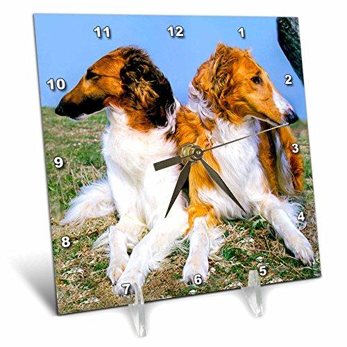 Borzoi Clock - 3dRose Dogs Borzoi - Borzoi - 6x6 Desk Clock (dc_403_1)