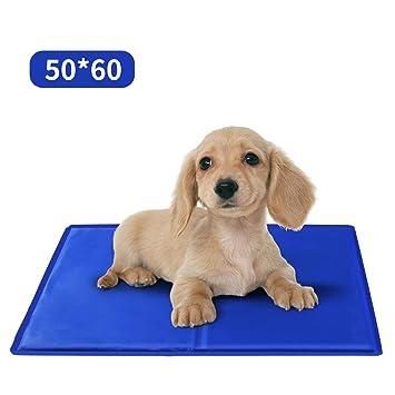 Nobleza – Alfombrilla refrescante para Mascotas Grandes. Auto refrigerante No tóxico. Ideal para para Perros, Gatos en Verano. 60 * 50 cm, Color Azul, ...