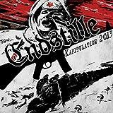 Endstille: Kapitulation 2013 (Black Vinyl) [Vinyl LP] (Vinyl)