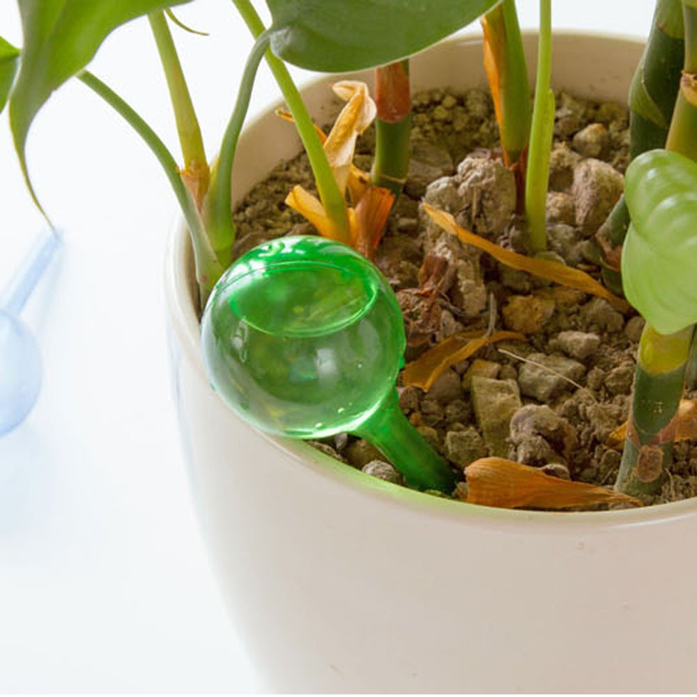 Xindda Automatic Watering Device Houseplant Plant Pot Bulb Globe Garden House,Waterer Irrigation Control Valve Switch for Garden Plants Indoor/Outdoor