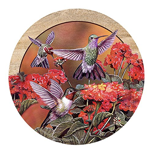 Hummingbird Coaster - Thirstystone Drink Coaster Set, Hummingbirds and Flowers
