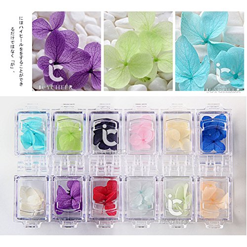 12 Colors/Box Dry Flowers Nail Decoration Natural Real Flowers Nail Art Accessories Kit Nail Art Tips DIY Decoration eshine.zone