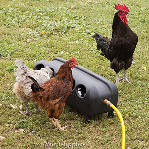 Premier Automatic Waterer for Chickens, Ducks & Geese / No - Mess Auto Drinker