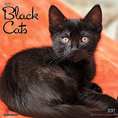 2017 Just Black Cats Wall Calendar