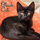 img - for Just Black Cats 2017 Wall Calendar (Cat Breed Calendars) book / textbook / text book