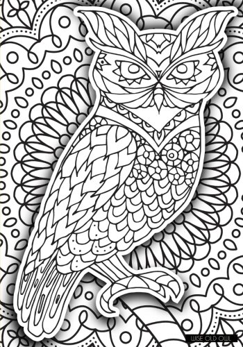 Wise Old Owl - A Color Your Cover Journal (Old Wise Owl)