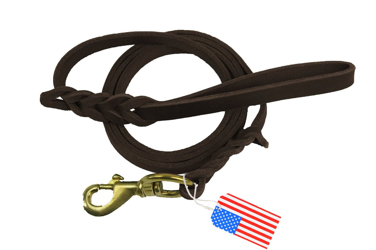 Premier 6 Foot Dog Leather Training Leash, Waist Braided Lease Leads, Made from Leather, Great Option for Large Medium Hunting Dogs or General Obedience in the Backyard by Highland Farms Select