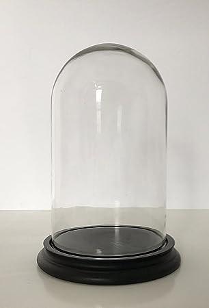 Glasdom Glassturz Glasglosche Glashaube Uhrensturz Ø 11 H 15 Glasglocke