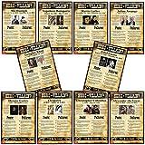 World History Hero or Villain? Mini-Poster Set of 10