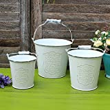 VANCORE Vintage White Shabby Chic Mini Metal Pitcher Flower Vase (White 3PCS/Set) Review