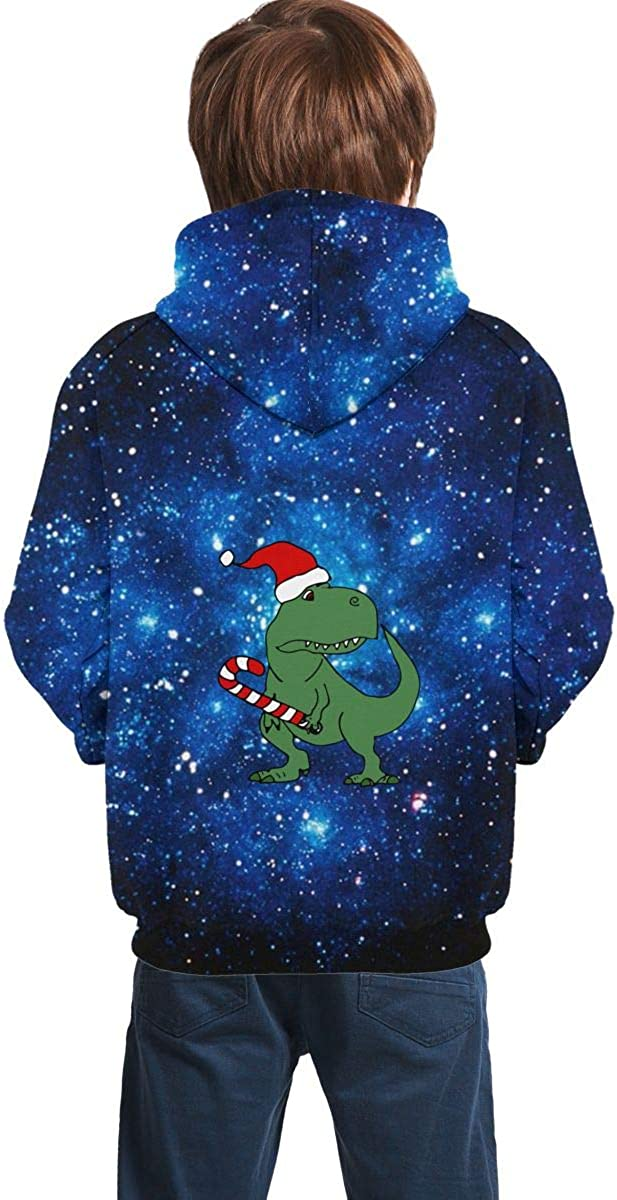 Dinosaur in Santa Hat Christmas Juniors Boys Girls Long Sleeve Hoodie Pullover for Winter Sweatshirt