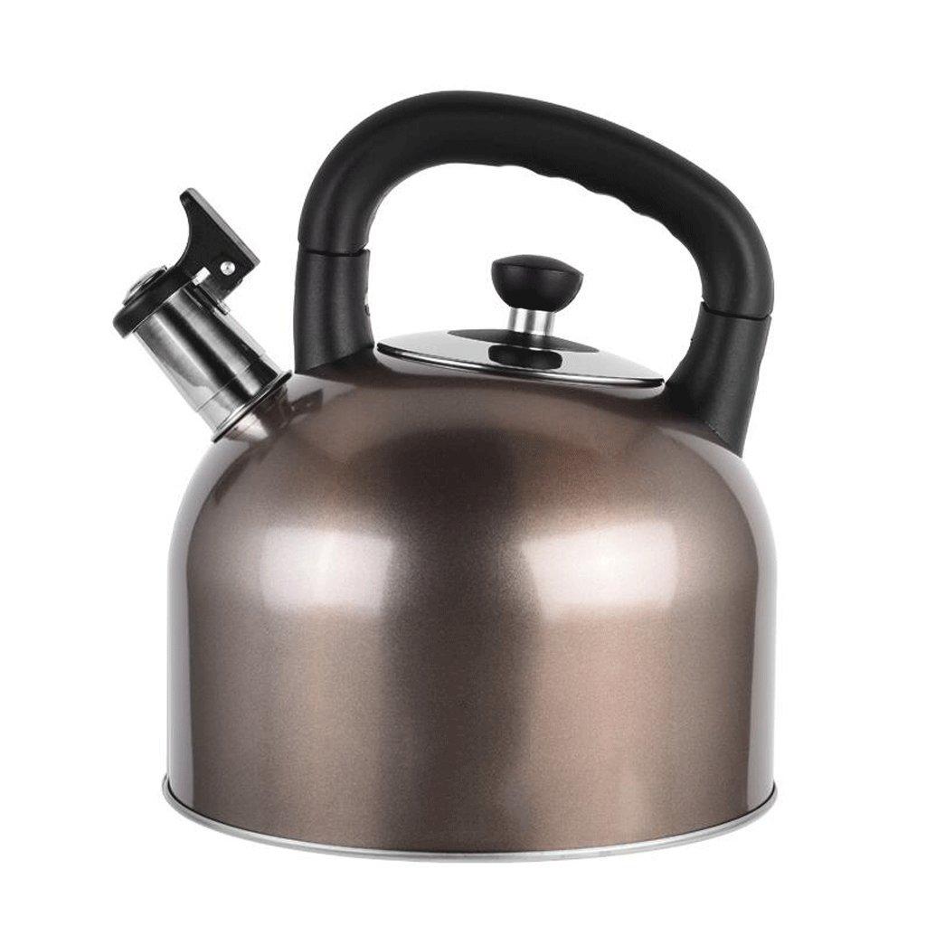 GAOLILI 304ステンレススチールホイッスルケトル大容量ガス炊飯器家庭用ホットケトルガス4L 5L 6L (色 : 4L) B07CQM79M5 4L 4L