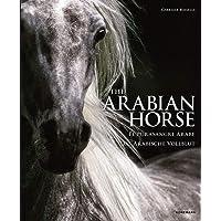 THE ARABIAN HORDSE EL PURA SANGRE ARABE (Spectacular