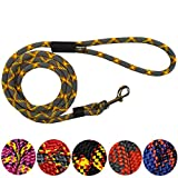 Extremely Durable Dog Rope Leash, Premium Quality Mountain Climbing Dog Rope Lead, Strong, Sturdy and Comfortable Leash, Supports the Strongest Pulling Large and Medium Sized Dogs, 6-feet, Grey