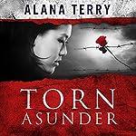 Torn Asunder   Alana Terry