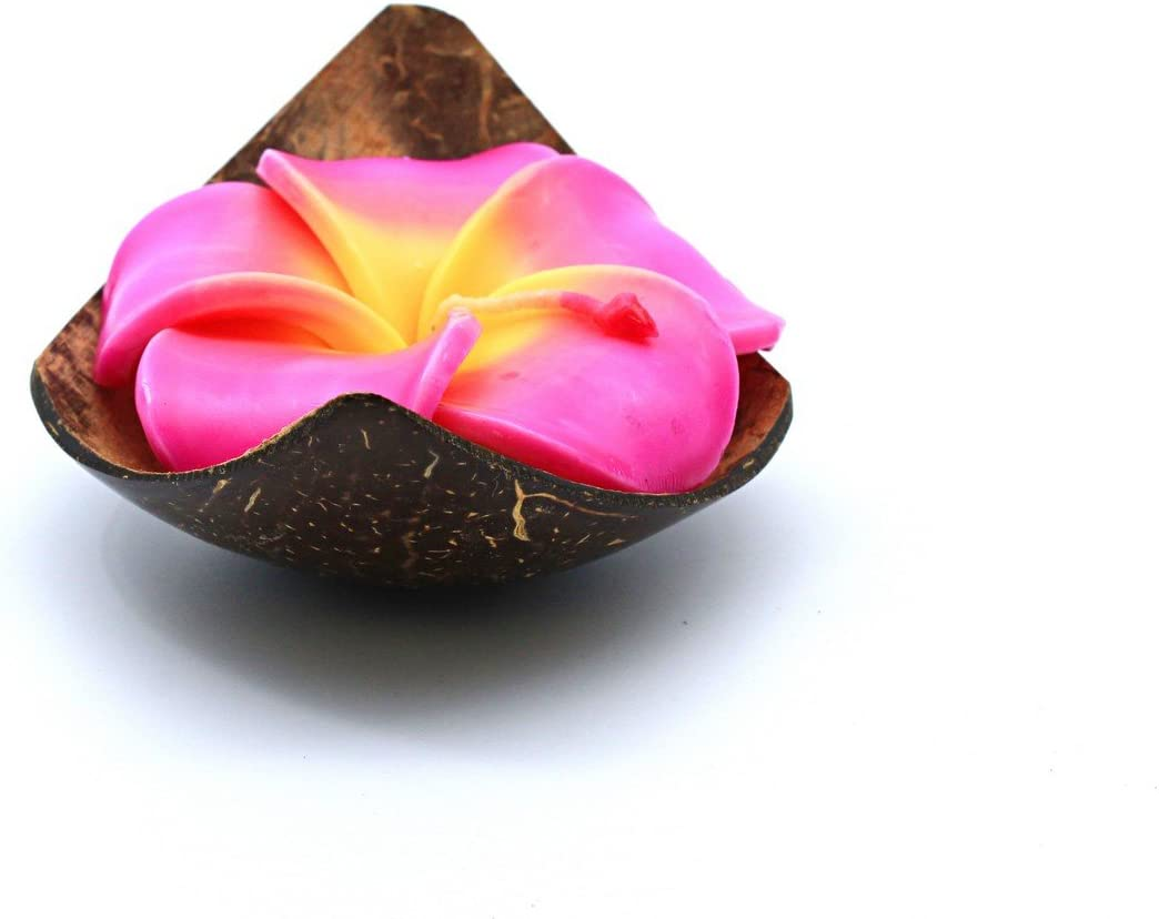 Hawaii Luau Party Real Coconut Quater Shell Candle Holder Floral Plumeira Rose Scented Candle in Pink