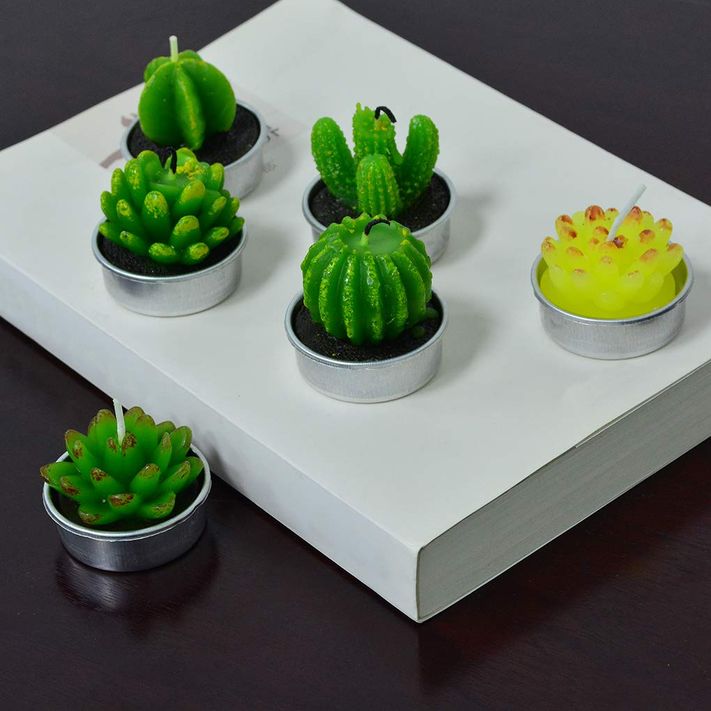 mifengda 12 PCS Cute Succulent Cactus Candles Smokeless Cactus Tealight Candles Delicate Decorative Candles Valentines Day Birthday House-Warming Party Wedding Spa Home Decoration Gifts