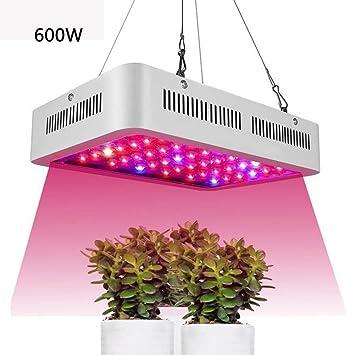 Led 600w Horticole Croissance Chambre J Eclairage Dans memi Lampe w8Nnm0