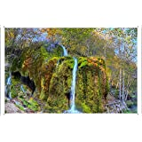 "Planet Scene Poster - Waterfall Grass Foam Trees 84460 Tin Sign (8""x12"")"