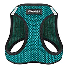 Best Pet Supplies Voyager All Weather No Pull Step-in Mesh Dog Harness with Padded Vest, Turquoise, Large